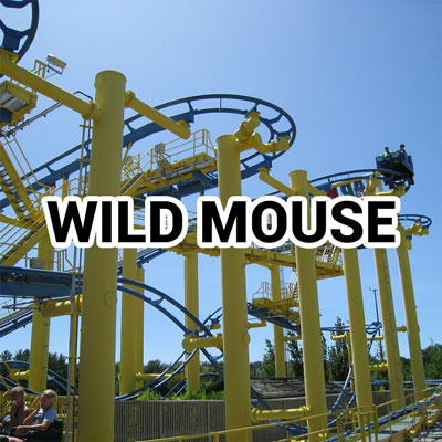 wild mouse steel