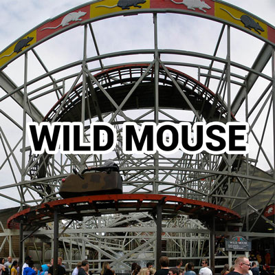 wild mouse wood