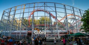 Cobra Tivoli Friheden