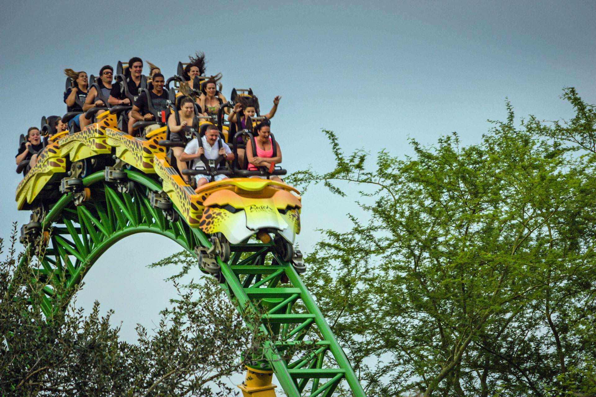 Lsm Launched Coaster Videos Facts Coasterforce