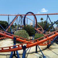 Scorpion Busch Gardens Tampa