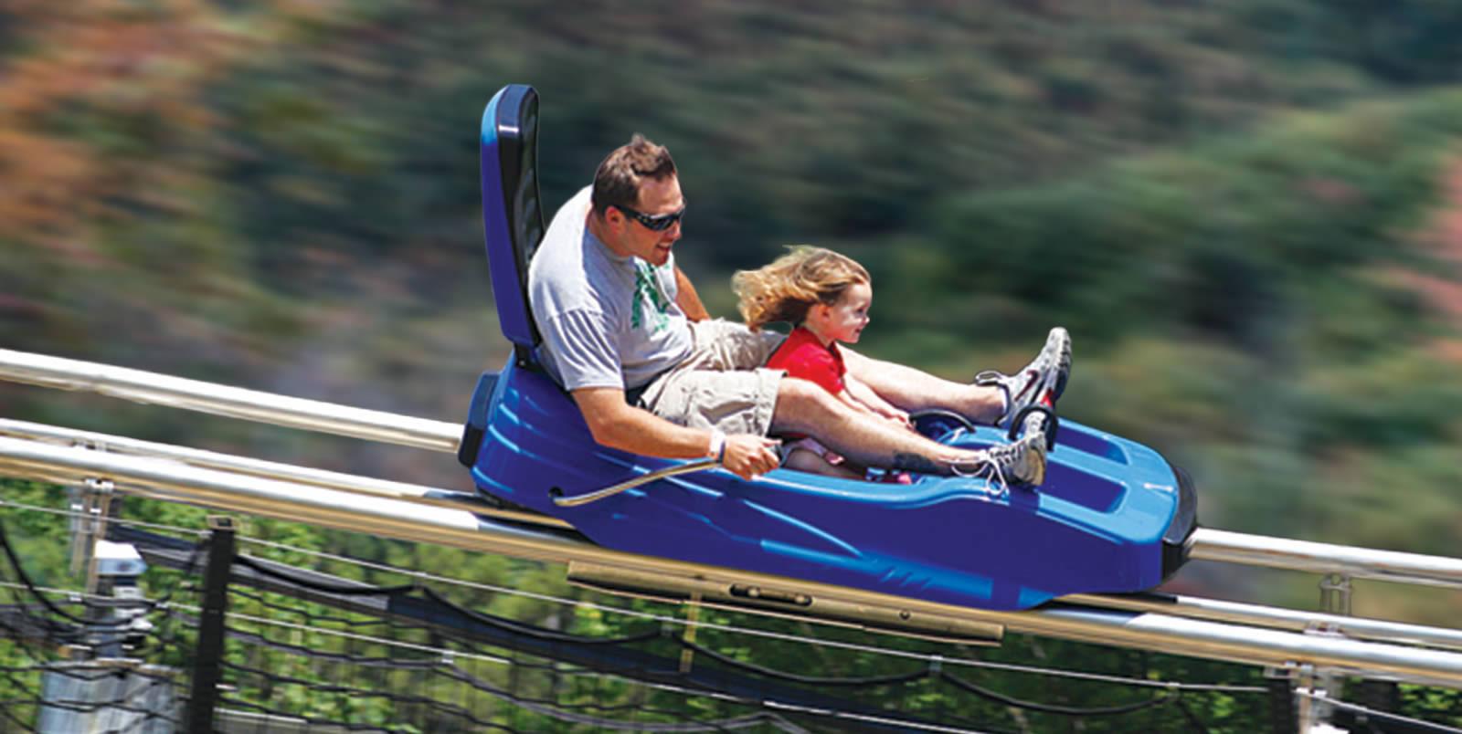 alpine mountain coaster videos amp facts coasterforce