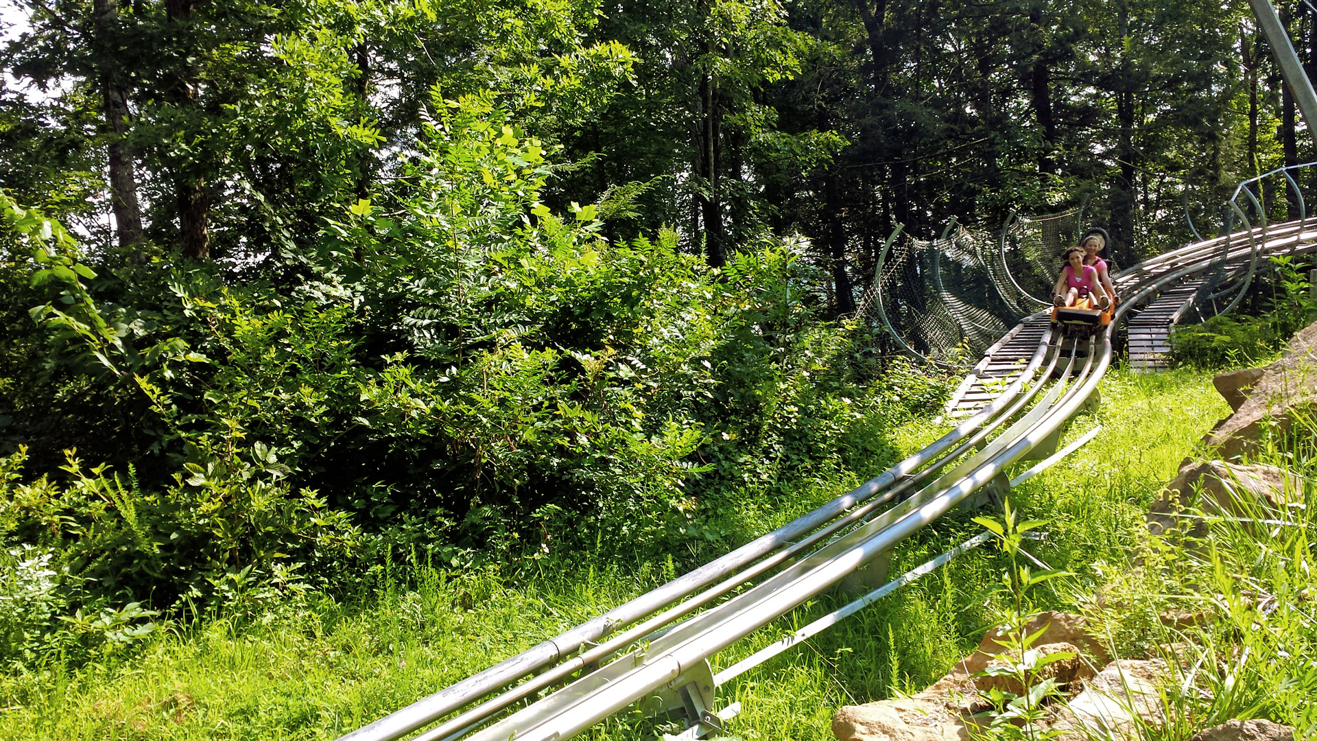alpine mountain coaster videos amp facts coasterforce