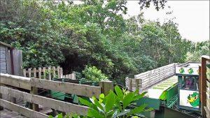 Green Dragon Greenwood Park