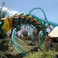 Kumba Busch Gardens Tampa