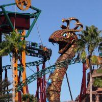 Cobra's Curse Busch Gardens Tampa