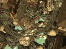 AlpinaBahnCurveWaterArtworkNQ.jpg